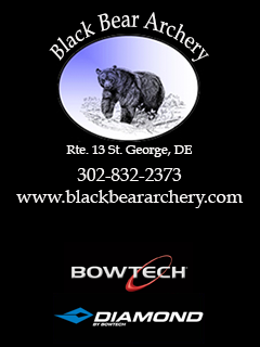 Black Bear Archery Banner